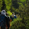 Hiking in Split and Trogir area